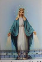 ご絵 手判 無原罪の聖母A C-33 14×9センチ 紙裏白