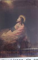 ポストカード15.4×10センチ フィデス G-14 ゲッセマネの祈り