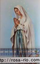 ご絵 手判 ルルドの聖母B C-36 14×9センチ 紙裏白