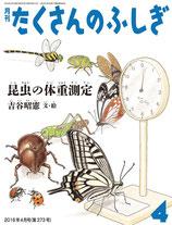 福音館 昆虫の体重測定