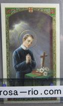 イタリア パウチご絵  聖ゲラルドA 11×7センチ