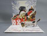 封筒つき 立体クリスマスカード 小 ワンギフト TR217