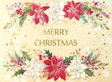 いのちのことば社 59225 クリスマスカードS340-88 ポインセチア