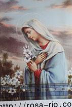 ご絵 手判 聖母マリア百合B C-59 14×9センチ 紙裏白