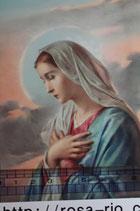 ご絵 手判 聖母マリアH C-60 14×9センチ 紙裏白