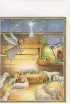 Caspari 英語 クリスマスカード 定型小型 幼子とひつじ