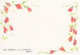 ポストカード 赤い花 私は主の恵みをとこしえに歌います