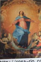 ポストカード15.4×10センチ フィデス G-11 聖母被昇天