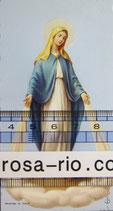御絵 無原罪の聖母 E