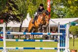 2016 05 19 - 4 Tage - Grundkurs - Pferdesport - Fotografie