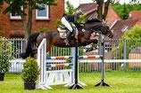 Sportfotografie  - Pferdesport