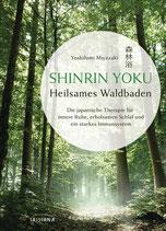 Heilsames Waldbaden SHINRIN YOKU