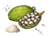 Baobab Fruchtpulver 250g