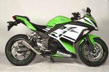 NINJA 250/300 MotoGP