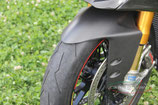 PANIGALE 899 FRONT FENDER