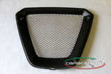 X DIAVEL OIL COOLER COVER