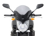FZ1 Touring Screen 06-
