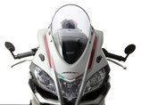 RSV4 RR/RF/1100 FACTORY Racing Screen