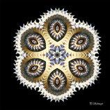 Mandala ''Schnecke-Fossil''