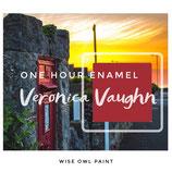 One Hour Enamel Paint Veronica Vaughn