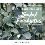 One Hour Enamel Seeded Eukalyptus