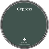 "Wise Owl Paint ""Cypress"""