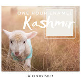 One Hour Enamel Paint Kashmir
