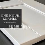 One Hour Enamel Paint Snow Owl