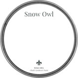 "Wise Owl Paint ""Snow Owl"""