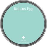 "Wise Owl Paint ""Robins Egg"""