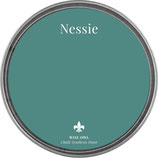 "Wise Owl Paint ""Nessie"""