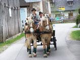 Gutschein Pferdekutschenfahrt  Kaiserfahrt