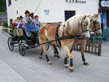 """Gutschein Pferdekutschenfahrt """"Steirische Roas"""""""