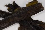 Sugar Kelp (Laminaria saccharina)