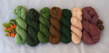 welthase Highland DK YARN KIT: green palette (1)  contains 400g seven colours