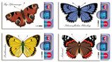 cardbox Schmetterling-Set > 4 Stück