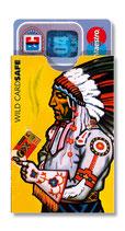 cardbox c 055 > Indianer