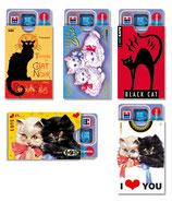 cardbox Katzen-Set > 5 Stück
