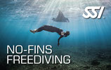08 *SSI Speciality  Dynamic no Fins (DNF)