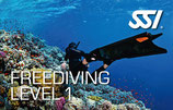 011 *SSI Freediving Level 1 Individualkurs