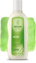 Weizen Schuppen-Shampoo