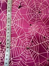 Baumwolle Spinnennetz