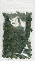 Miniatur Blätter Grün