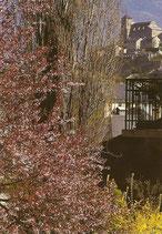 Carte postale no 7 - Sion, château de Valère