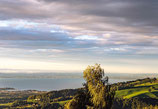 2118 · bodensee