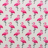 BW Motiv Flamingo auf creme
