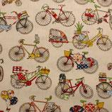 BW Fahrräder 1