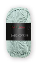 Basic Cotton Farbe 60