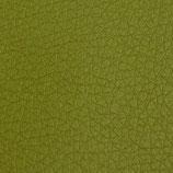 Apfelgrünes Perlmuttglanz Kunstleder