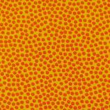 BW Dottys Orange